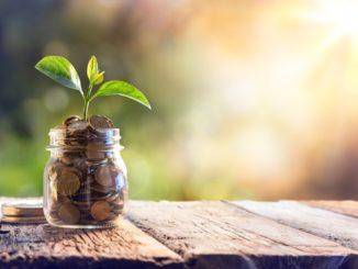 Plant Growing In Savings Coins -