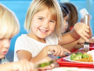 school-meals,canteen,food