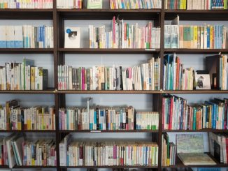 Primary pupils' reading skills boosted by new programme