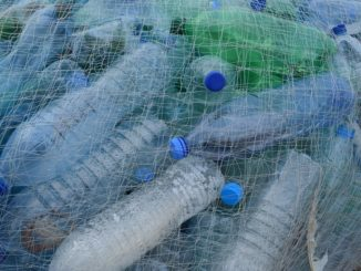 Seven ways to reduce plastic in your workplace