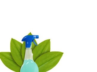 Clean green: how to clean your school sustainably