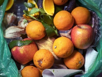 Britain's schools responsible for 80K tonnes of food waste annually