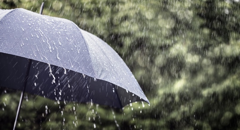 Rain on umbrella background, weather forecast and environment concept